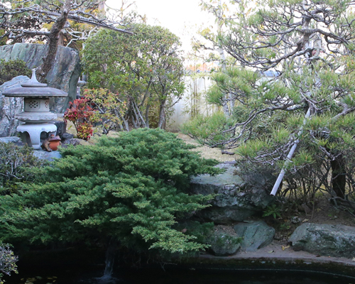 Please enjoy a leisurely meal while viewing our traditional Japanese landscape garden